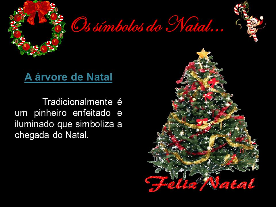 Os símbolos do Natal… A árvore de Natal