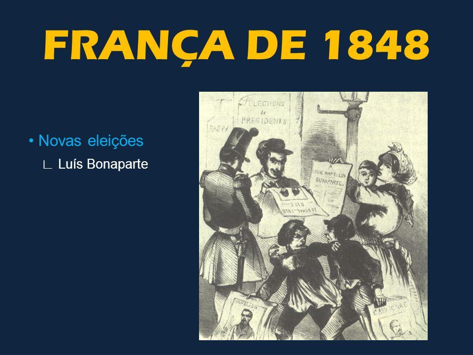 FRANÇA DE 1848 • Novas eleições ∟ Luís Bonaparte