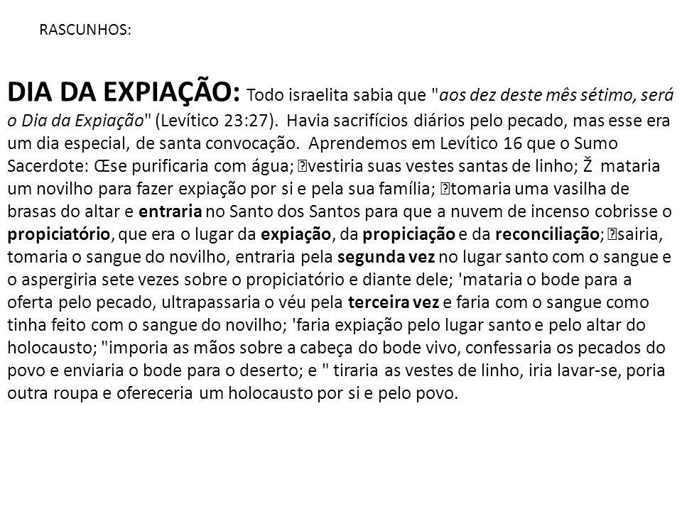 RASCUNHOS: