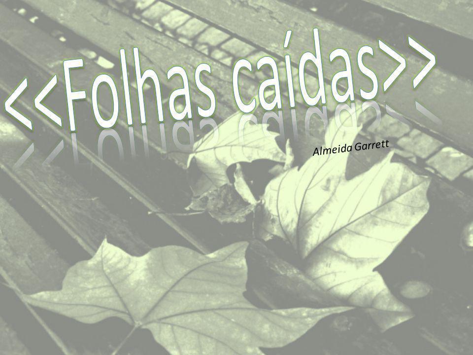 <<Folhas caídas>>