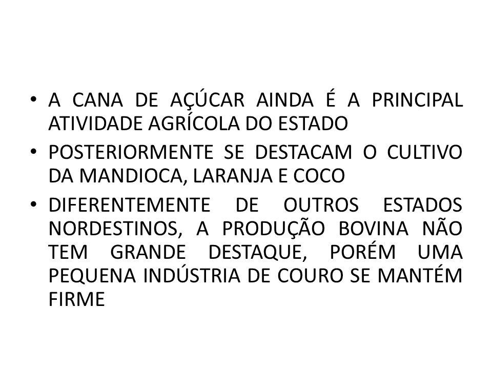 A CANA DE AÇÚCAR AINDA É A PRINCIPAL ATIVIDADE AGRÍCOLA DO ESTADO