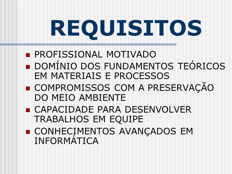 REQUISITOS PROFISSIONAL MOTIVADO