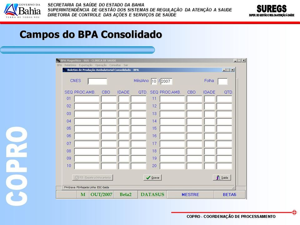 Campos do BPA Consolidado