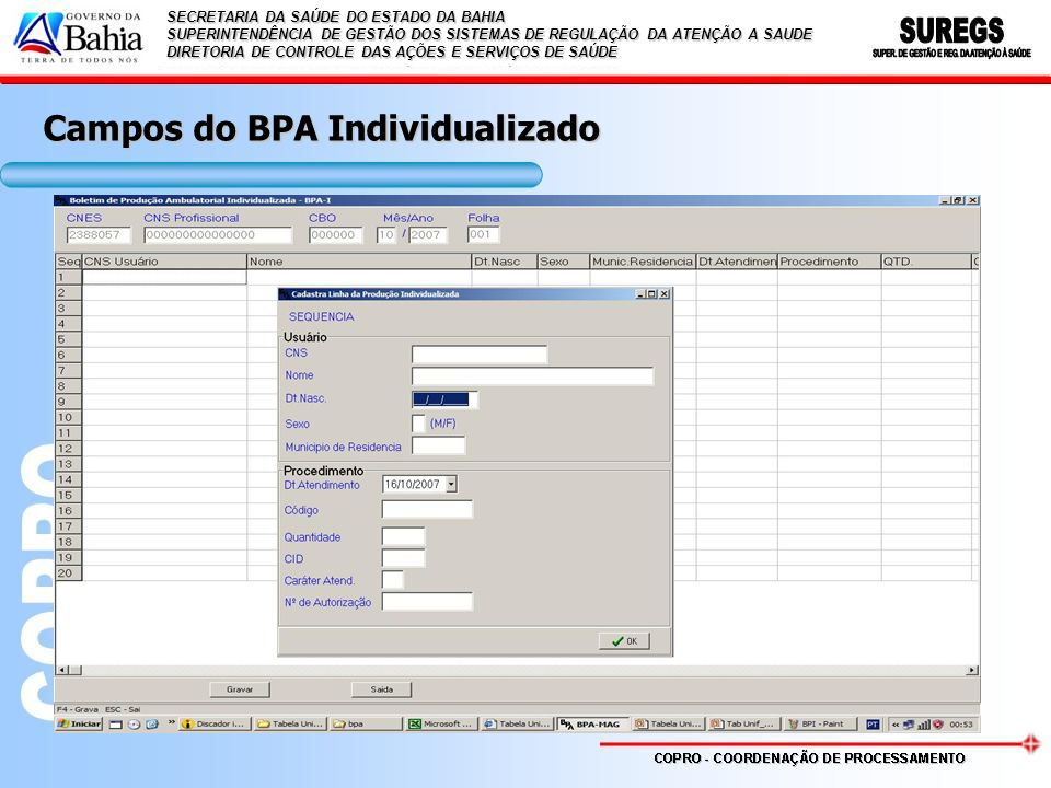 Campos do BPA Individualizado