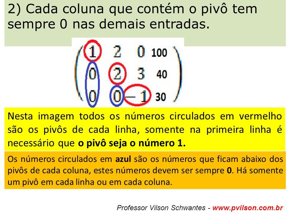 2) Cada coluna que contém o pivô tem sempre 0 nas demais entradas.