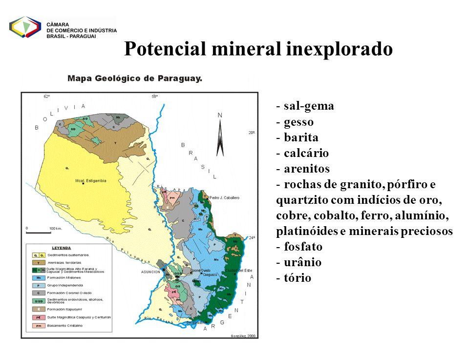 Potencial mineral inexplorado
