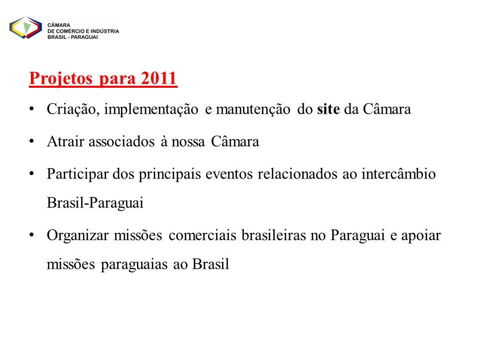 Projetos para 2011 Criação, implementação e manutenção do site da Câmara. Atrair associados à nossa Câmara.