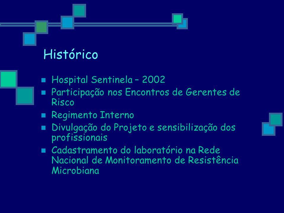Histórico Hospital Sentinela – 2002