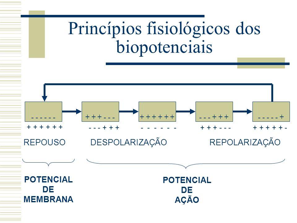 Princípios fisiológicos dos biopotenciais