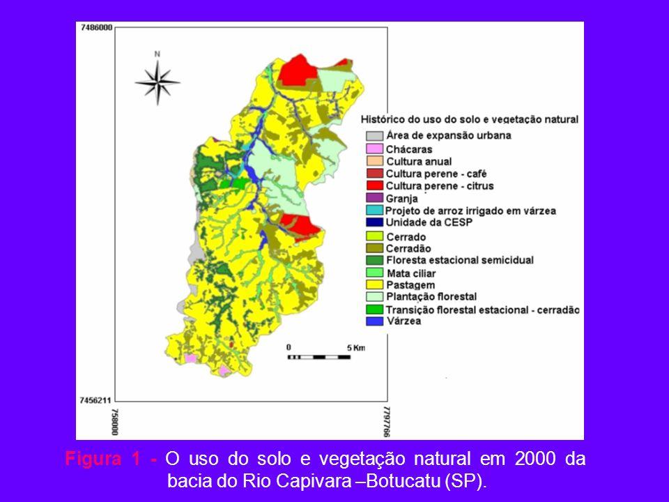 Figura 1 - O uso do solo e vegetação natural em 2000 da
