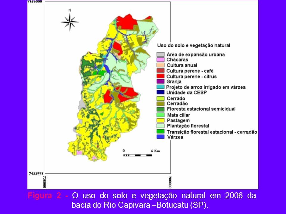 Figura 2 - O uso do solo e vegetação natural em 2006 da