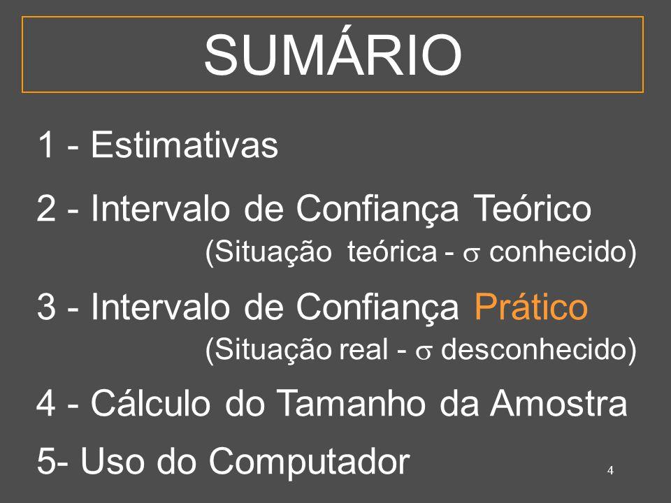 SUMÁRIO 1 - Estimativas 2 - Intervalo de Confiança Teórico