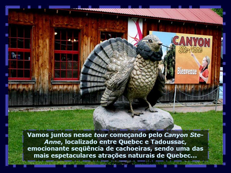 IMG_1862 - CANADÁ - QUEBEC - CANYON DE SANT ANNE-680
