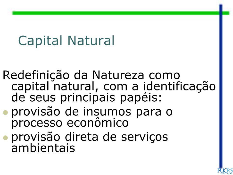 Capital Natural Redefinição da Natureza como capital natural, com a identificação de seus principais papéis: