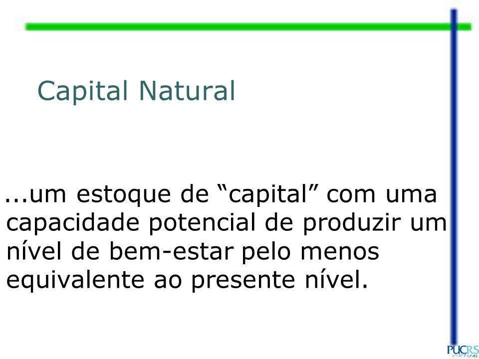 Capital Natural ...um estoque de capital com uma capacidade potencial de produzir um nível de bem-estar pelo menos equivalente ao presente nível.
