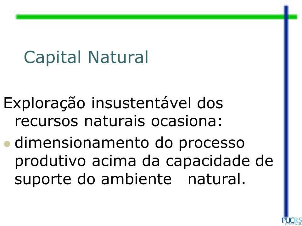 Capital Natural Exploração insustentável dos recursos naturais ocasiona: