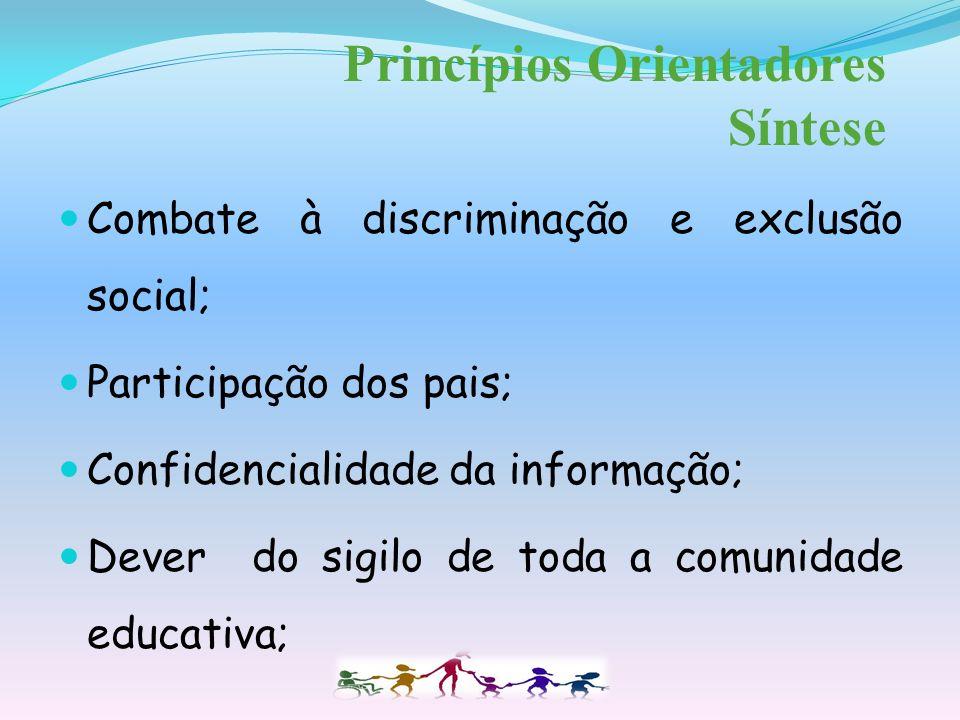 Princípios Orientadores Síntese