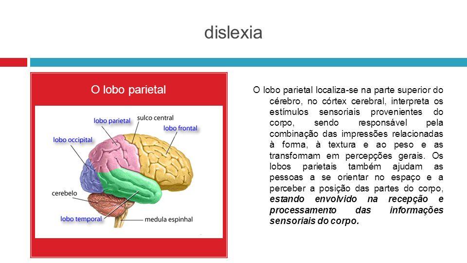 dislexia O lobo parietal