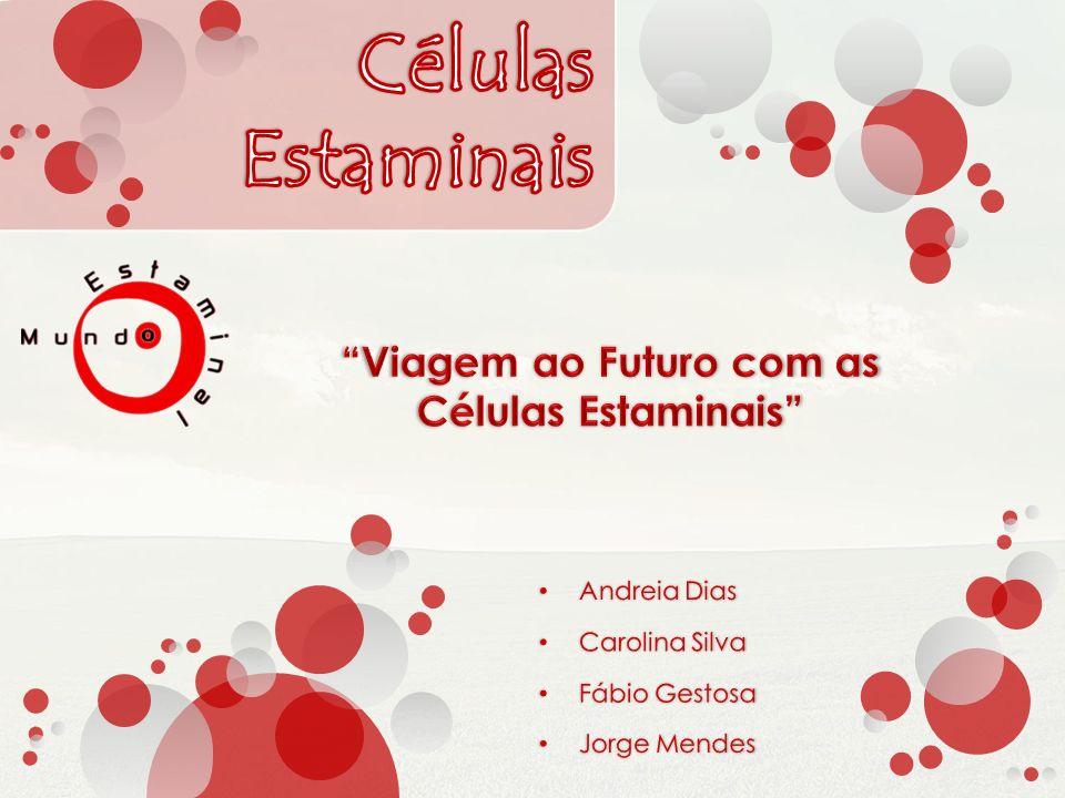 Andreia Dias Carolina Silva Fábio Gestosa Jorge Mendes