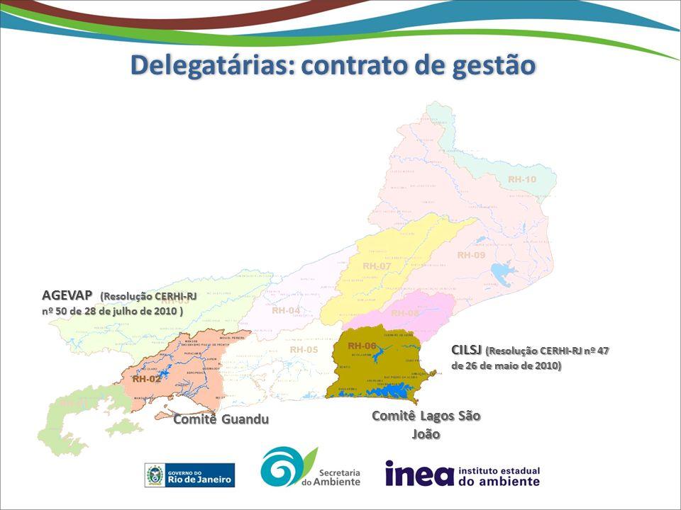 Delegatárias: contrato de gestão