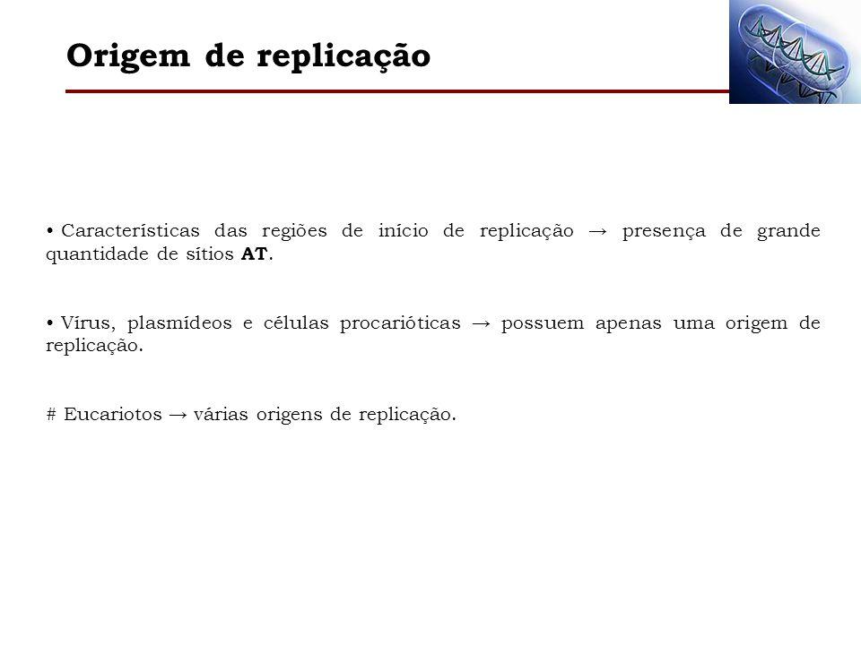 Origem de replicação Características das regiões de início de replicação → presença de grande quantidade de sítios AT.