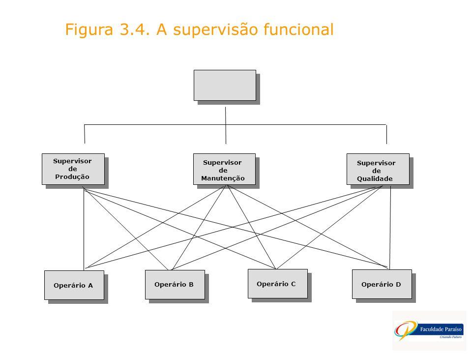 Figura 3.4. A supervisão funcional