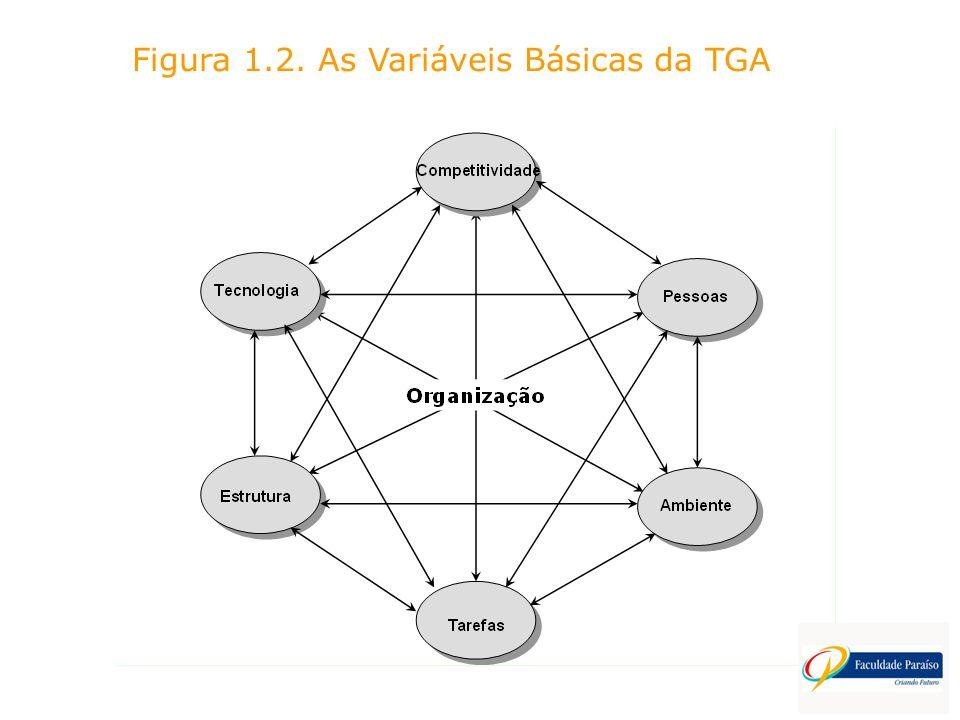 Figura 1.2. As Variáveis Básicas da TGA