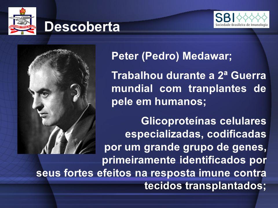 Descoberta Peter (Pedro) Medawar;