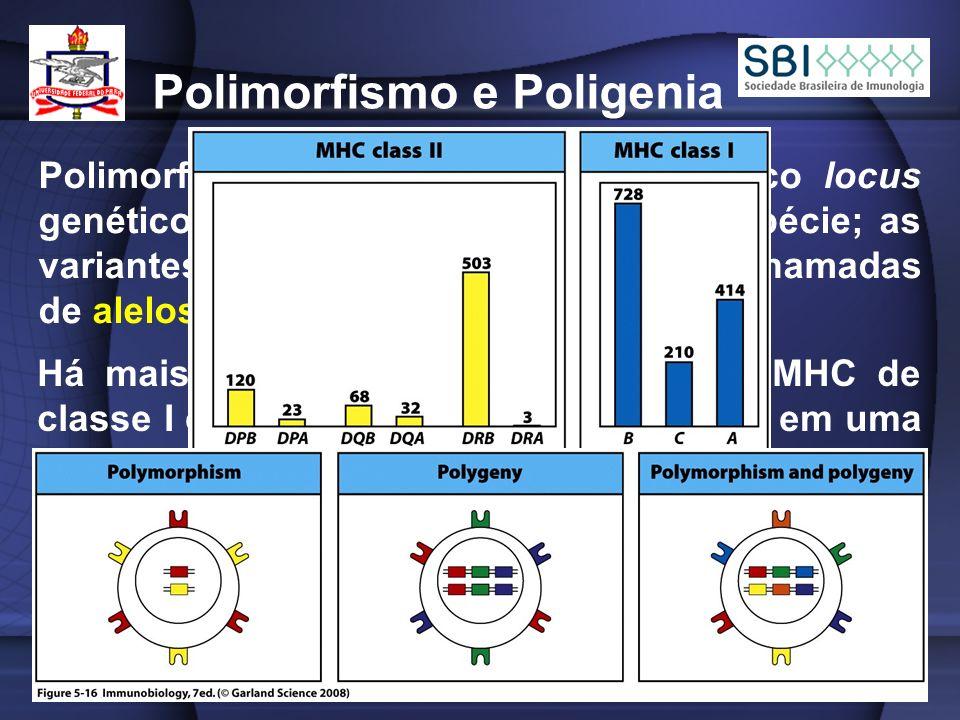 Polimorfismo e Poligenia