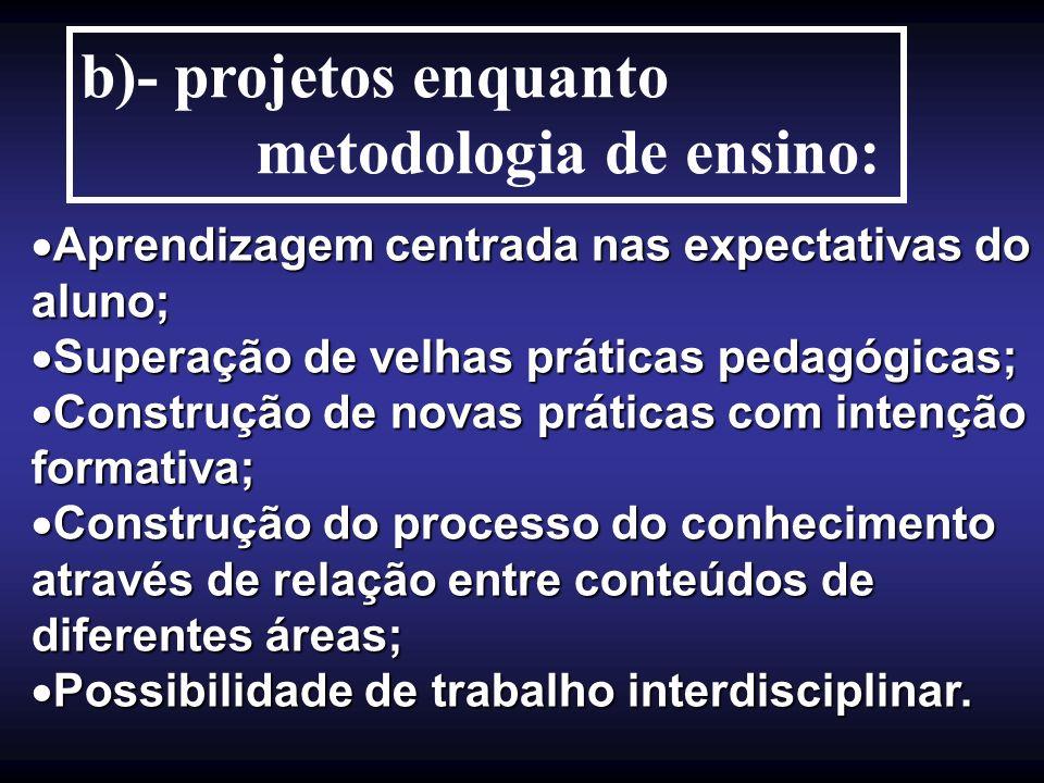 metodologia de ensino: