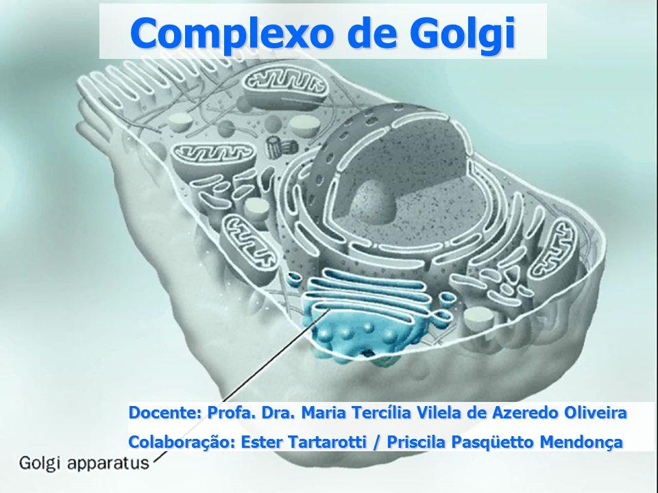 Complexo de Golgi Docente: Profa. Dra. Maria Tercília Vilela de Azeredo Oliveira.