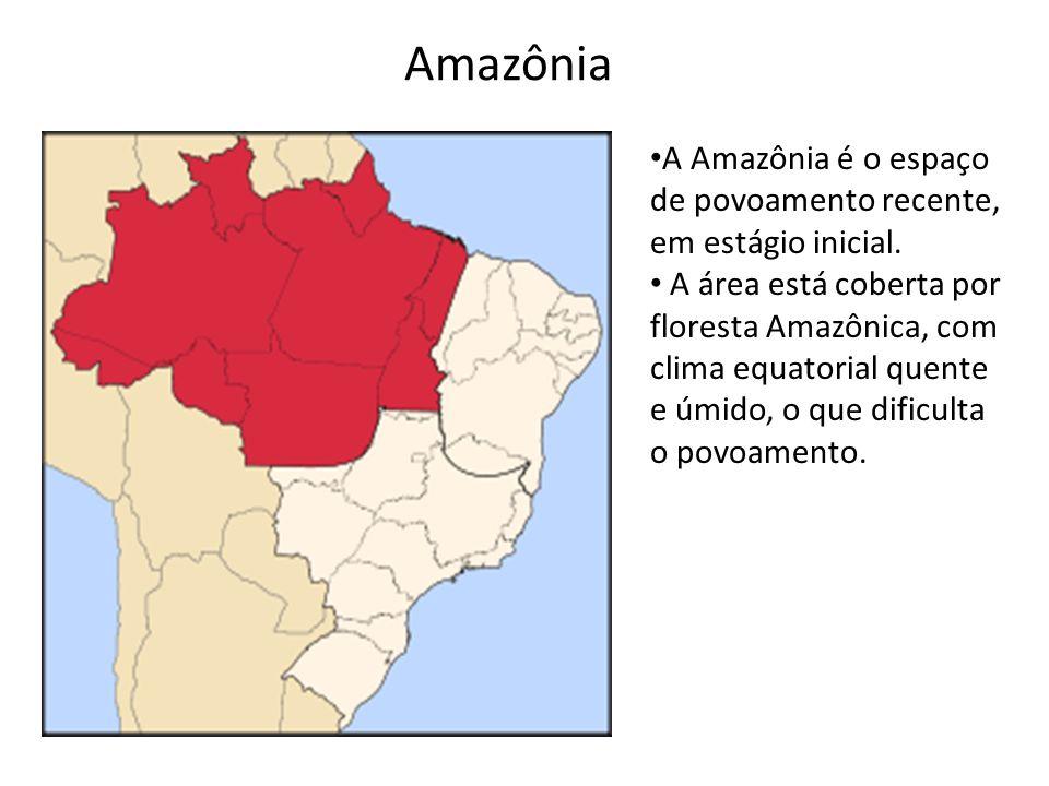 Amazônia A Amazônia é o espaço de povoamento recente, em estágio inicial.