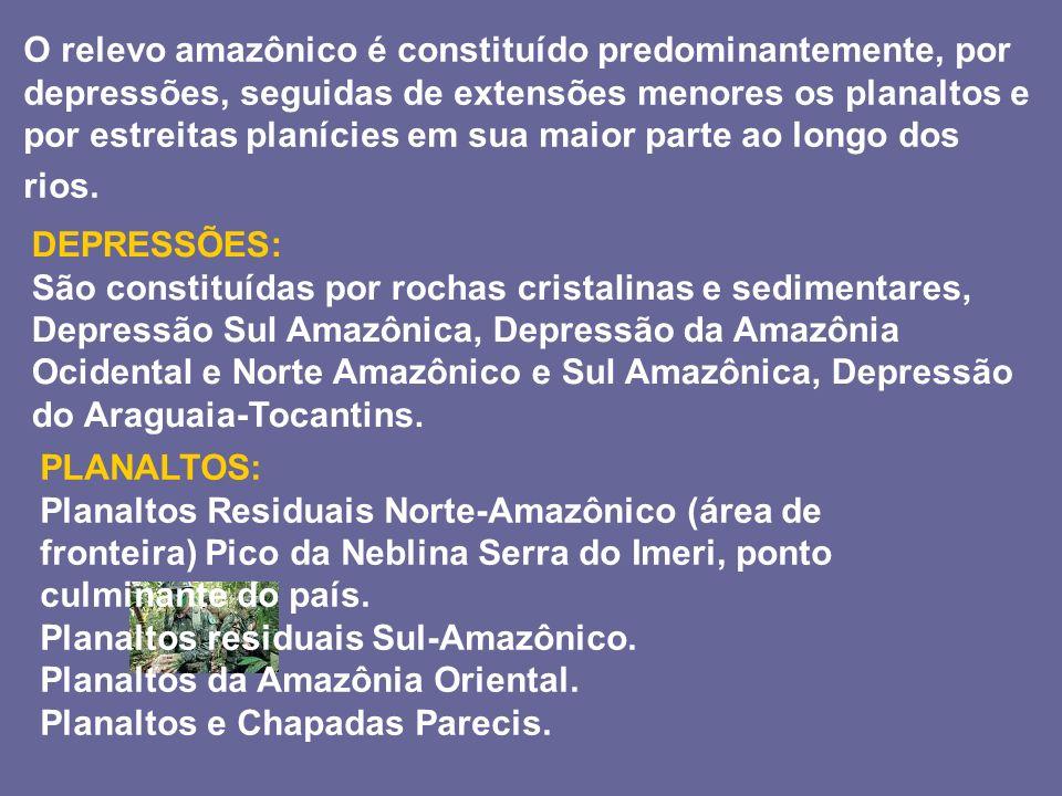 O relevo amazônico é constituído predominantemente, por depressões, seguidas de extensões menores os planaltos e por estreitas planícies em sua maior parte ao longo dos rios.