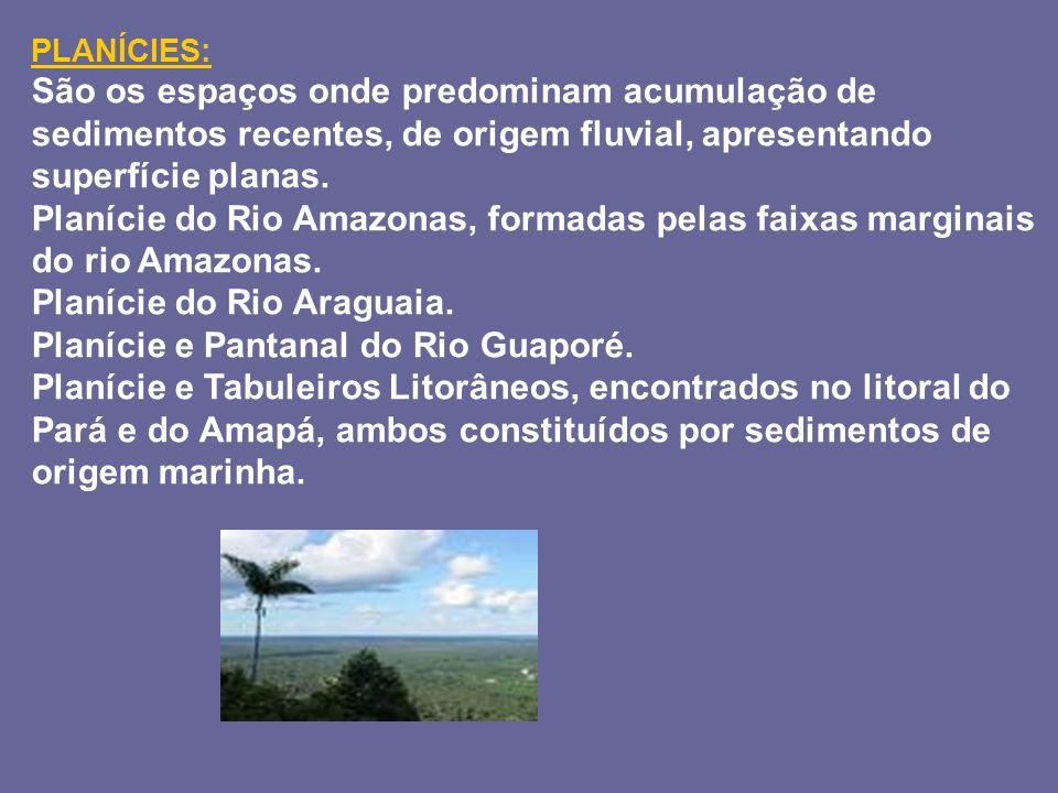 Planície do Rio Araguaia. Planície e Pantanal do Rio Guaporé.