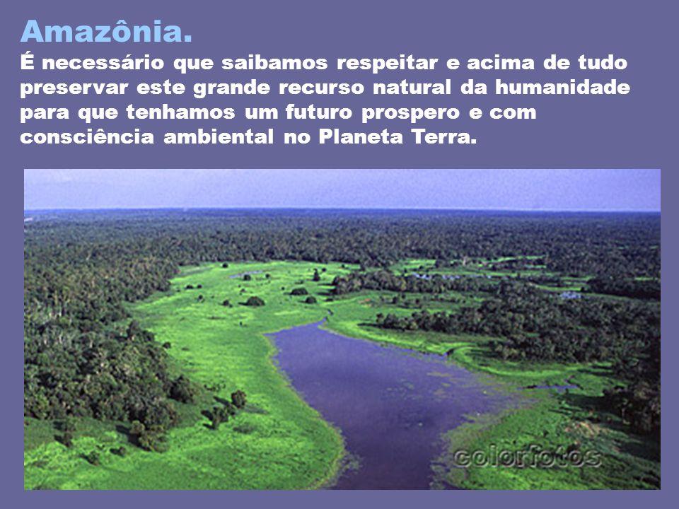 Amazônia.