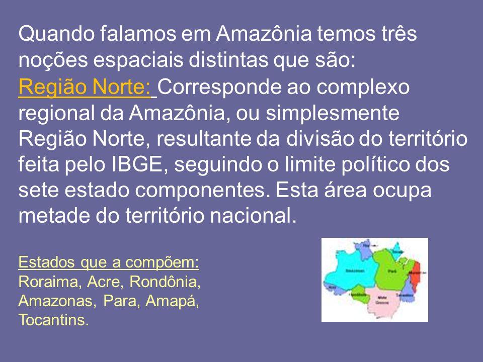 Quando falamos em Amazônia temos três noções espaciais distintas que são: