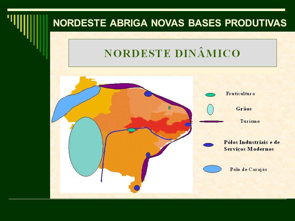 NORDESTE ABRIGA NOVAS BASES PRODUTIVAS