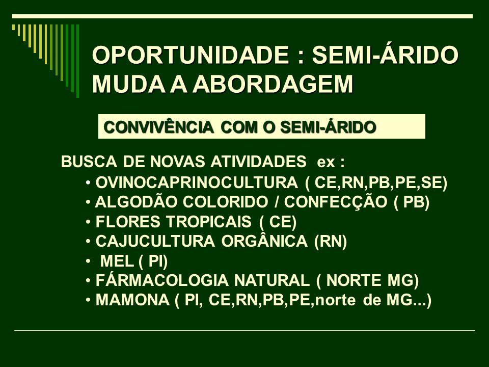 OPORTUNIDADE : SEMI-ÁRIDO MUDA A ABORDAGEM