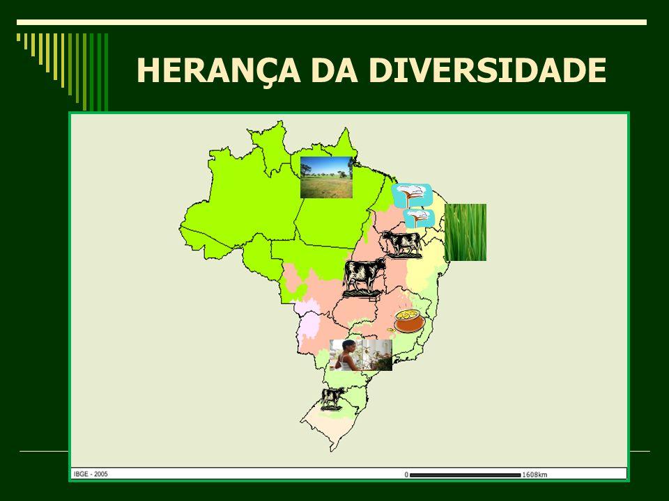 HERANÇA DA DIVERSIDADE