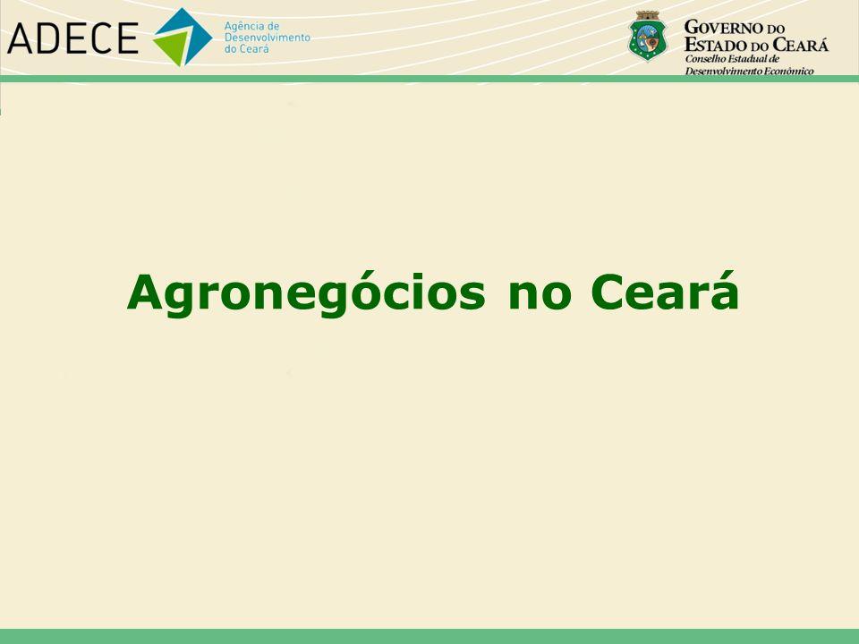46464646 Agronegócios no Ceará 46 46 46