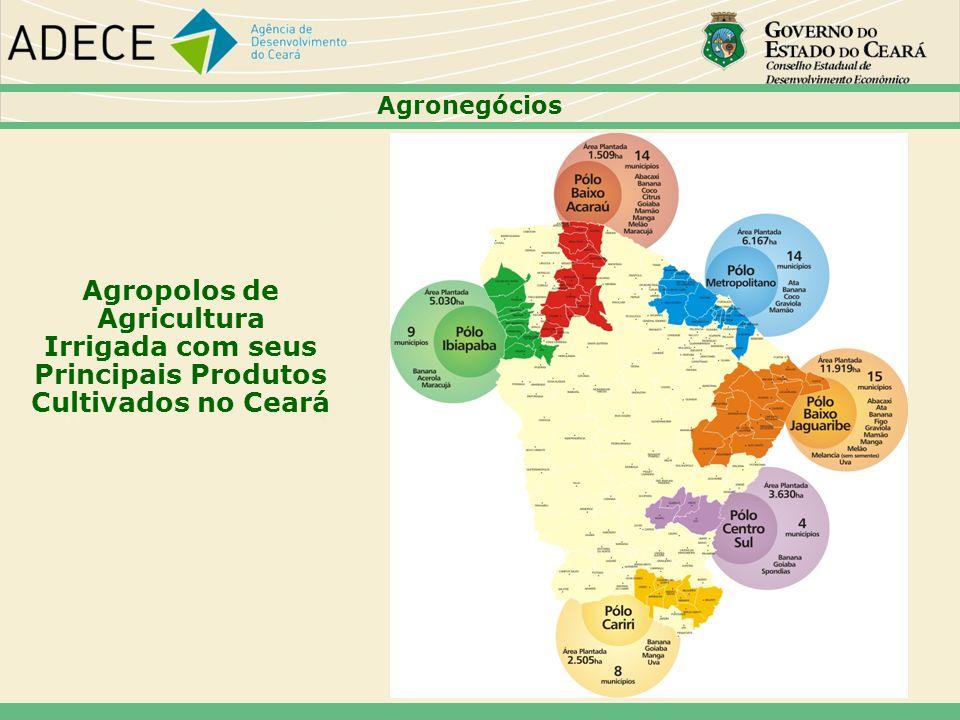 47474747 Agronegócios. Agropolos de Agricultura Irrigada com seus Principais Produtos Cultivados no Ceará.