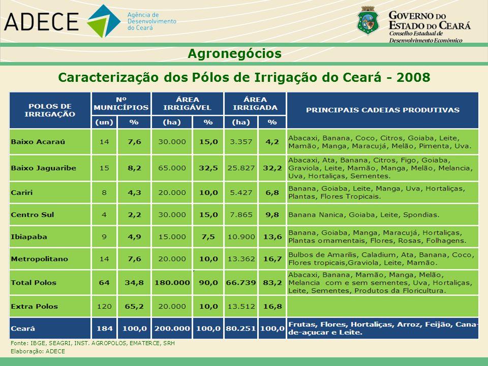 Caracterização dos Pólos de Irrigação do Ceará - 2008
