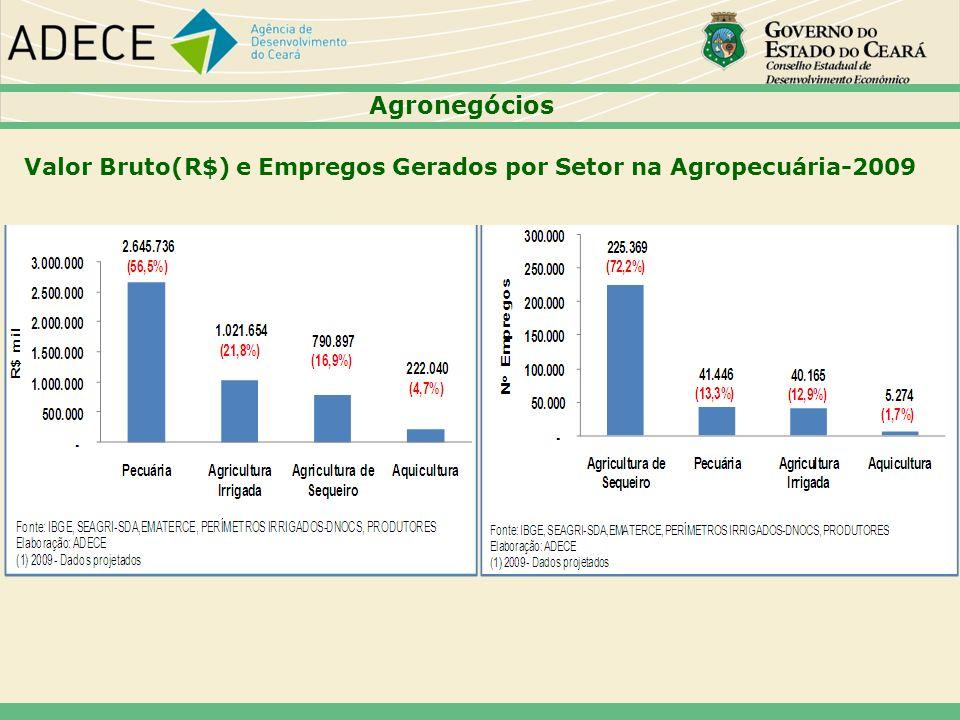 Agronegócios Valor Bruto(R$) e Empregos Gerados por Setor na Agropecuária-2009 53