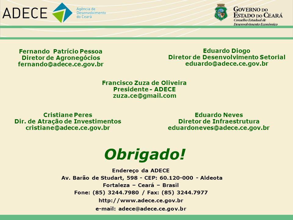 Obrigado! 57575757 Fernando Patrício Pessoa Diretor de Agronegócios