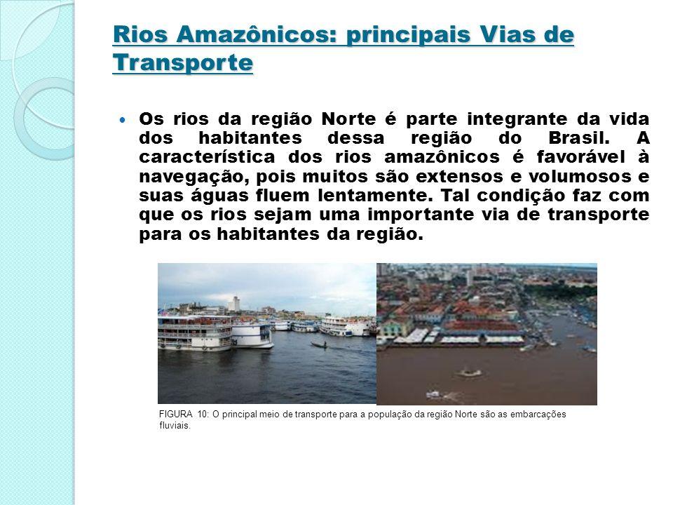 Rios Amazônicos: principais Vias de Transporte