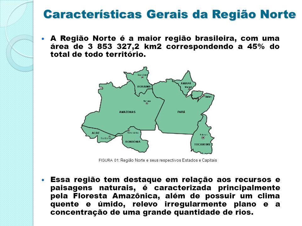 Características Gerais da Região Norte