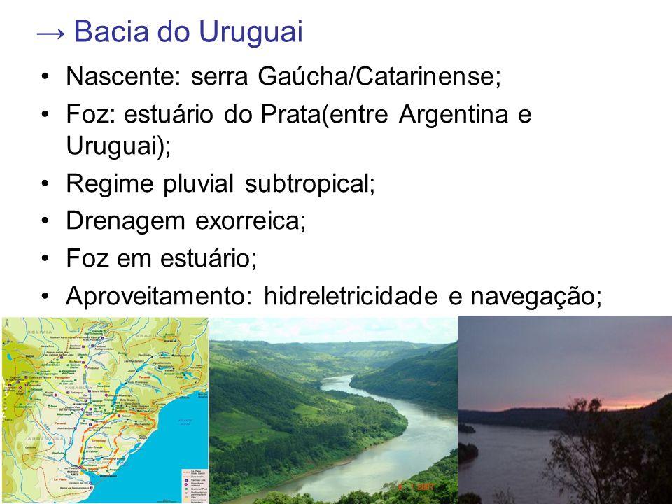 → Bacia do Uruguai Nascente: serra Gaúcha/Catarinense;