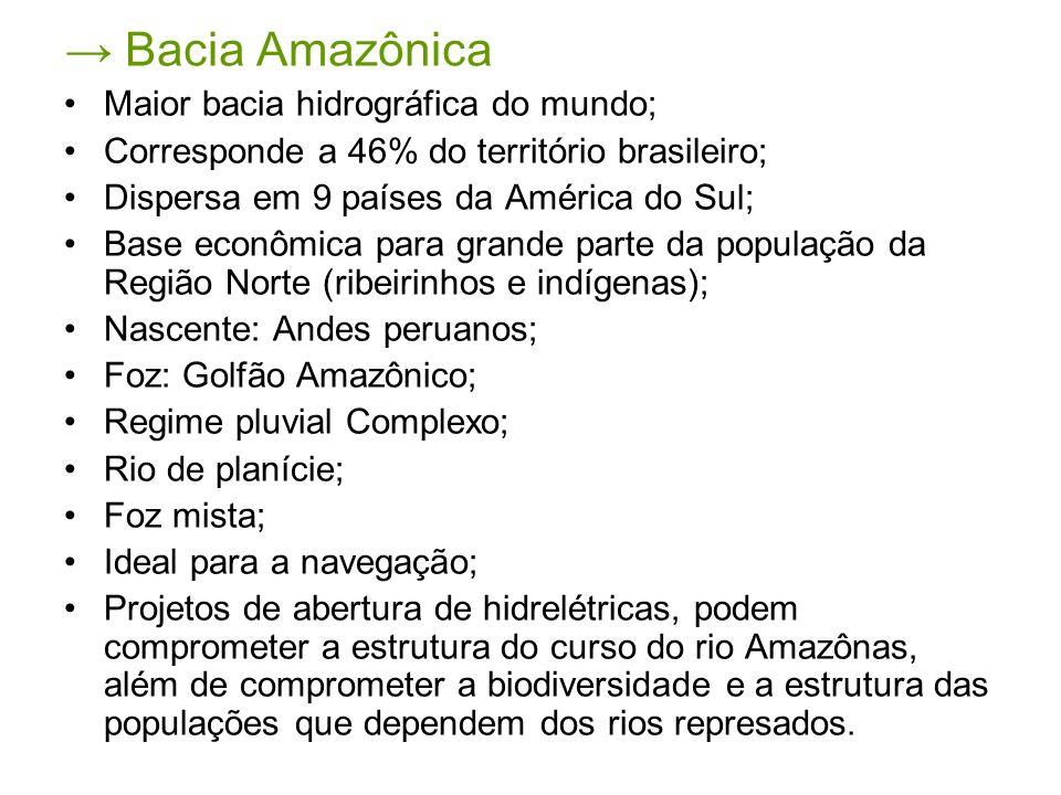 → Bacia Amazônica Maior bacia hidrográfica do mundo;