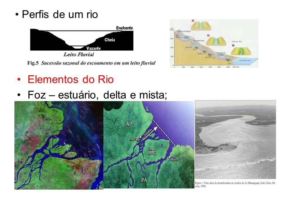 Perfis de um rio Elementos do Rio Foz – estuário, delta e mista;