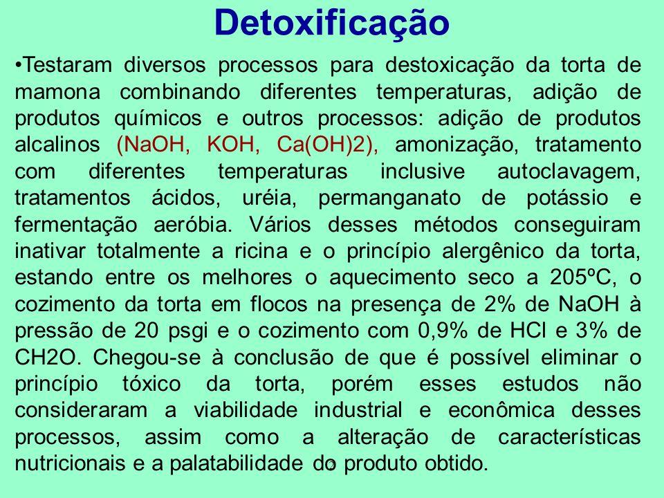 Detoxificação